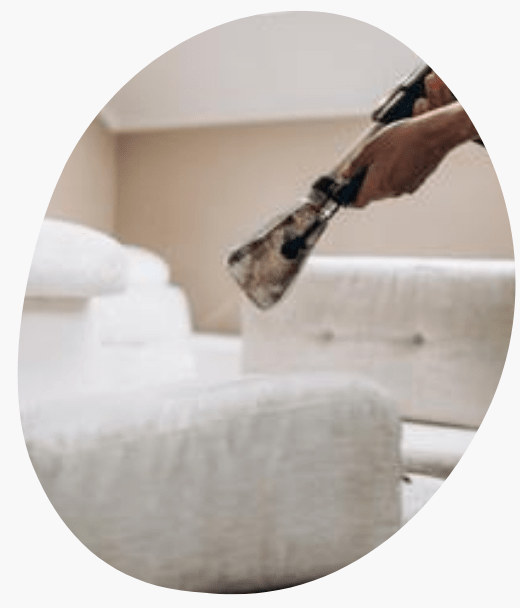 Upholstery Cleaning Services Frankston